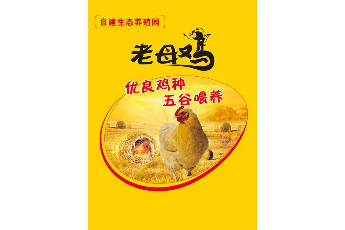 神丹老母鸡800g/2只 生态养殖土鸡 新鲜活鸡 速冻保鲜顺丰包邮